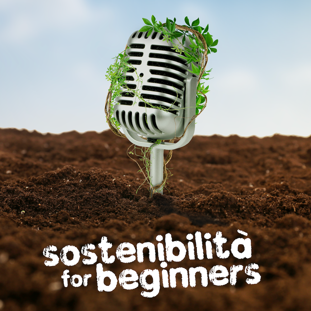 Sostenibilità for beginners cover